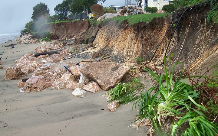 Coastal erosion at Pakawau.