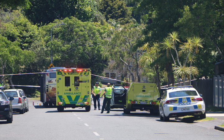 Emergency services at the scene of the crash on Gowing Drive in Auckland on 12 January 2019.