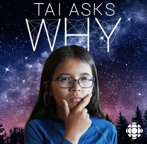 Tai Asks Why logo (Supplied by CBC)