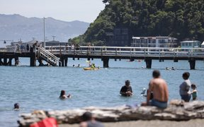 People in Wellington take to the water to cool down.