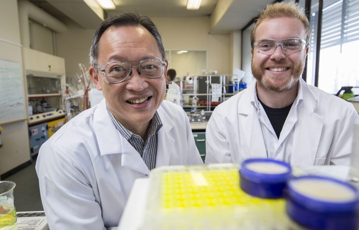 Chemists Eng Tan and Sean Mackay, in the lab at the University of Otago.