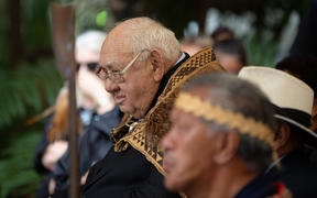 Carver and celestial navigator 'Uncle Hek' has been knighted at Waitangi.