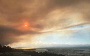 Ash is falling in Atawhai, north of Nelson City from a forest fire in Tasman.