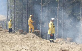 Fire crews fighting the Nelson area fires.