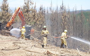 Firefighters tackle fire in Moutere North Forest in north-eastern sector of fire zone near Nelson.