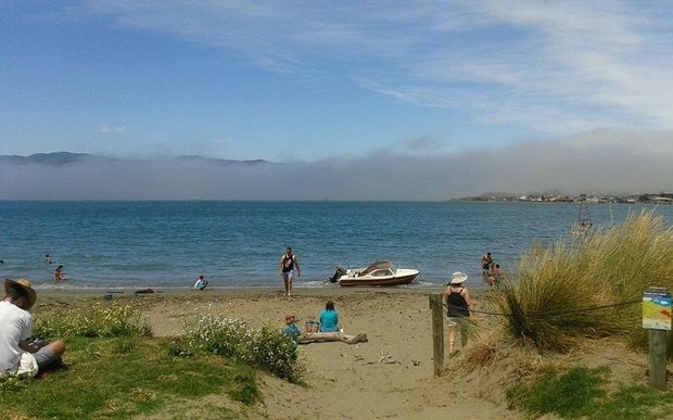 An eerie sea mist started rolling in from the south this morning. Worser Bay Beach.