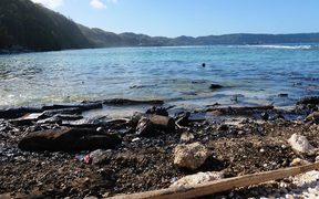 Oil slick from the shipwrecked MV Solomon Trader polluting the shoreline on Rennell Island in the Solomons. February 2019
