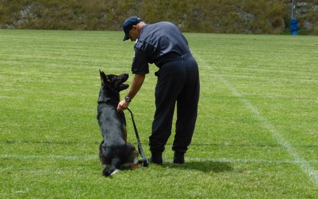 Sergeant Brett Marley, from Wellington Police's dog squad, says his dog is his best mate.