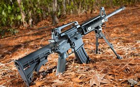 19805786 - semi automatic black rifle on a pine needle and forest background