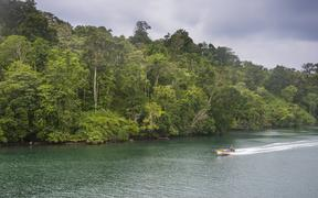 A boat on a river in the jungle of Manus Island