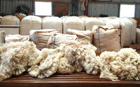 Stephen Jack in the shearing shed