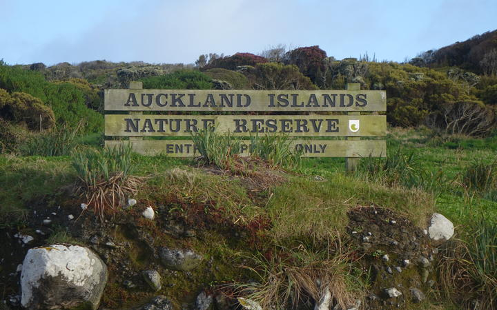 The Auckland Islands.
