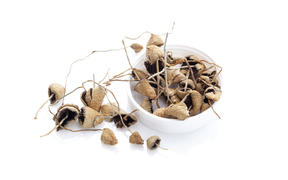 Dried Psylocibyn magic mushrooms in kit. Isolated on white background. Natural remedy.