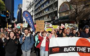 Teachers and supporters march in Wellington.