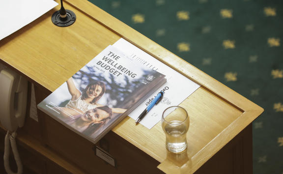 The 2019 budget in the debating chamber