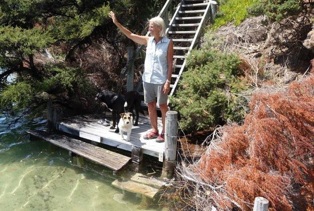 Franks jetty: Cathy Franks and the pet pooches on the jetty below the family's Awaroa home.