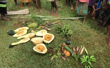 Villagers display their failed crops in the drought affected Mougulu area of PNG's Western Province.
