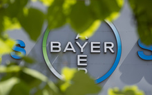 A logo of German pharmaceutical giant Bayer appears on an overpass at its Berlin headquarters July 24, 2013.