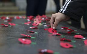 Members of the public laid poppies on the Tomb of the Unknown Warrior following the Wellington dawn service