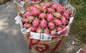 Dragon fruit developed by Plant and Food Research.