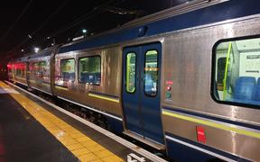 Train at Petone station.
