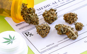 Medical marijuana buds spilling out of prescription bottle with branded lid onto blank medical prescription pad on green background