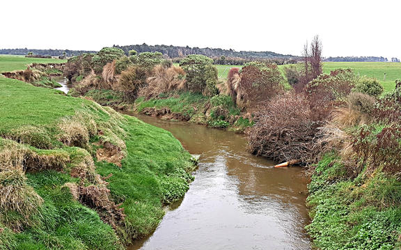 A creek that runs through Ray McCrostie's farm in Southland