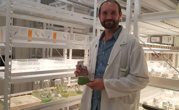 Jonathan Puddick and flasks containing the living collection of microalgae that is housed at the Cawthron Institute.