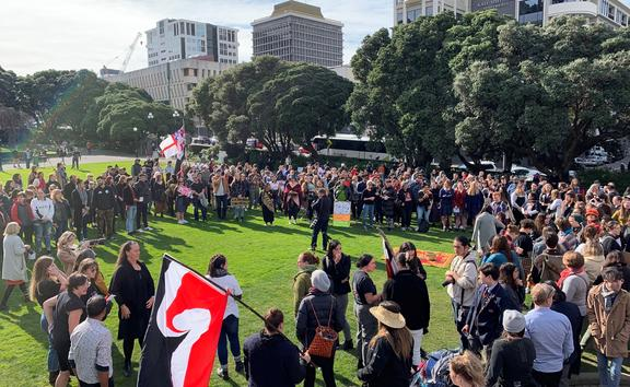 Hundreds of people have gathered outside Parliament in solidarity for those occupying Ihumātao.