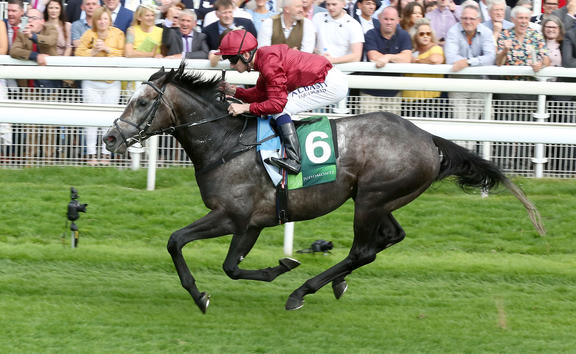 Roaring Lion ridden by jockey Oisin Murphy.