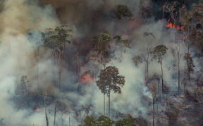 Smoke billowing from forest fires in the municipality of Candeias do Jamari in Rondonia State, 24 August.