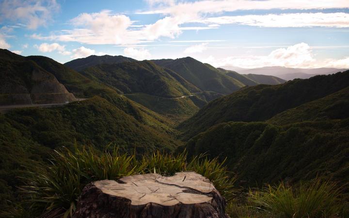 Rimutaka Ranges from the Remutaka Pass