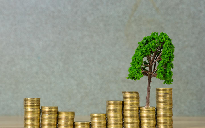 Tree growing on pile of golden coins, growth business finance investment and Corporate Social Responsibility or CSR practice and sustainable development concept idea.