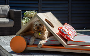 """chien-lounge"" dog house design"