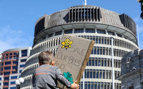 At a climate strike protest a small boy holds a banner towards the Beehive reading 'Save our bees and trees'.