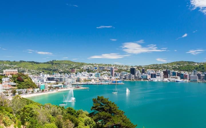 20931757 - view from mount victoria into the bay of wellington  capital city of new zealand