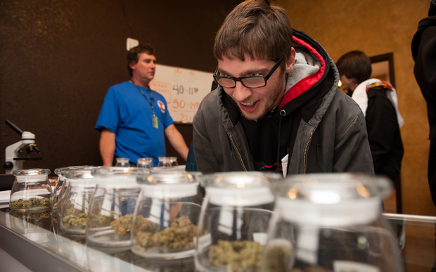Tyler Williams selects marijuana strains to purchase at a Colorado dispensary on January 1, 2014 - the first day licensed retailers could legally sell cannabis.