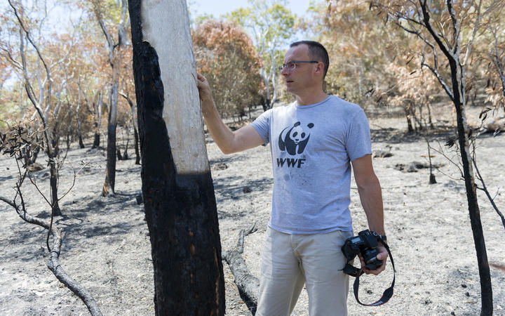 The WWF's Hubert Geraux surveys fire damage in 2015. Over 100 square kilometres have now been ravaged by fire in the past two months