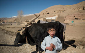 A boy in a village in Bamyan Province, Afghanistan. Seven children were killed by unexploded ordnance left in firing ranges used by New Zealand forces in the area.