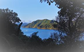 The cove at the northern head of Marlborough's Queen Charlotte Sound was where Captain Cook first dropped anchor in the South Island.