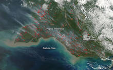 NASA image of smoke and fires in Indonesia's Papua province and neighbouring Papua New Guinea. Actively burning areas are outlined in red. September 2015.