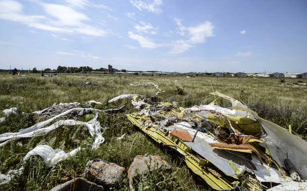 A picture shows debris at the crash site of the Malaysia Airlines Flight MH17 near the village of Hrabove, Ukraine.
