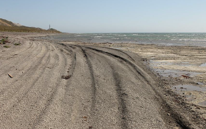 Tyre tracks on the coast south of Cape Campbell.