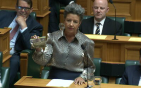 Paula Bennett in the House of Parliament with 14 grams of a cannabis lookalike.