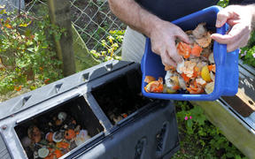 Man emptying a container full of domestic food waste, ready to be composted.