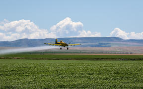 Top dressing plane, crop dusting.