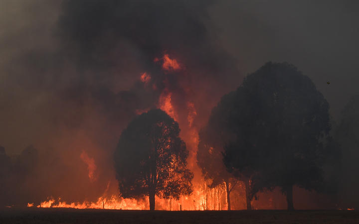 Smoke and flames rise from burning trees as bushfires hit the area around the town of Nowra in New South Wales on December 31, 2019.