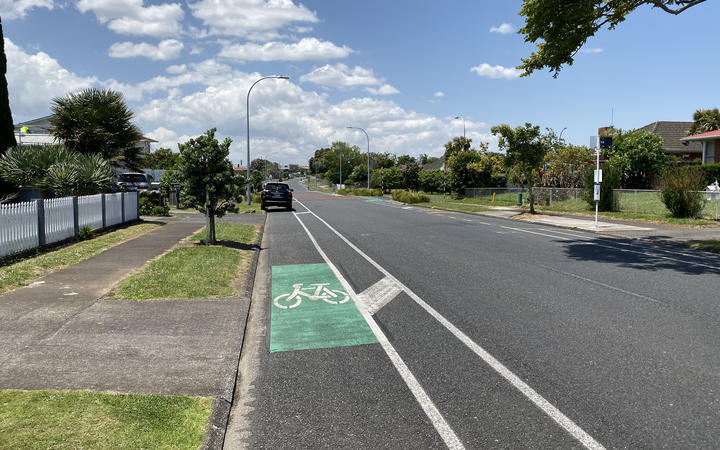 A visit to Mangere's Friesian Drive showed recently-constructed cycle ways being used for off-street parking.
