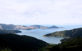 The Cook Strait from the Marlborough Sounds.