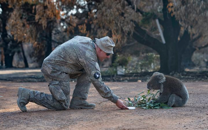 NZ Army's 2ER assist ADF personnel at Kangaroo Island's Hanson Bay Wildlife Reserve during the Australian Bushfires.
